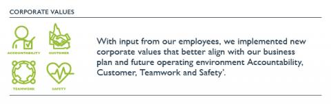 Corporate values icon